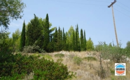 LAND FOR SALE IN FARAKLATA, KEFALONIA