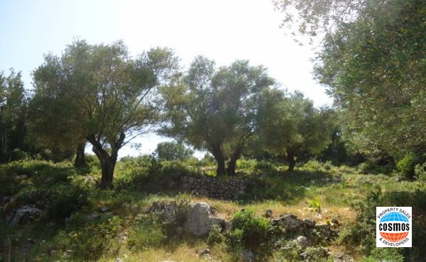 PLOT FOR SALE IN TSELENTATA, KEFALONIA