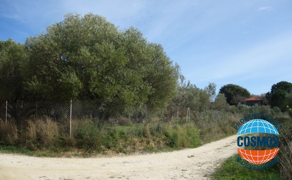 LAND FOR SALE IN SPARTIA, KEFALONIA