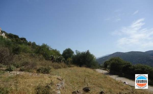 Plot for sale in Dendrinata, Kefalonia